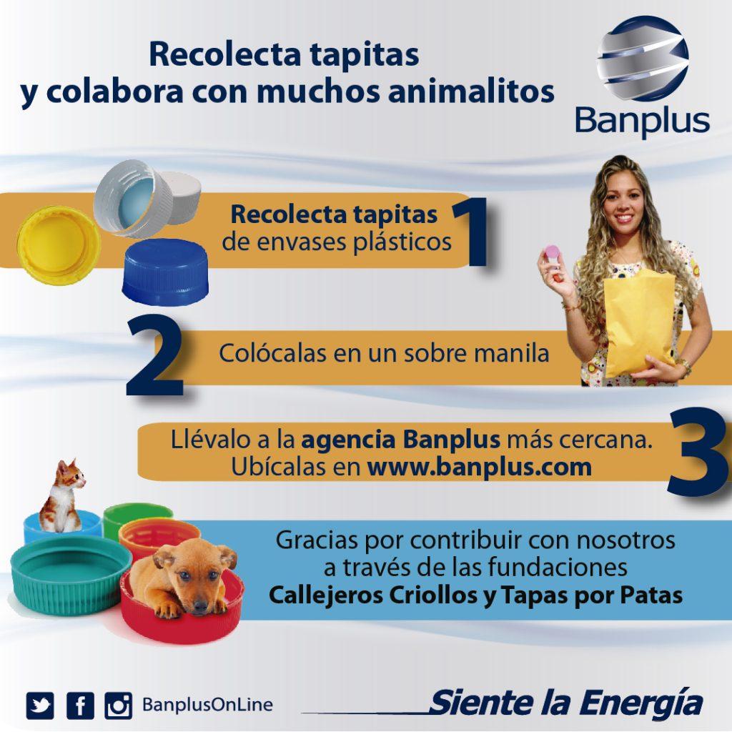 banplus recoleccic3b3n de tapas 1024x1024 - ¡Vamos juntos por la tonelada! Con tus tapitas de plástico colabora con muchos animalitos en Banplus
