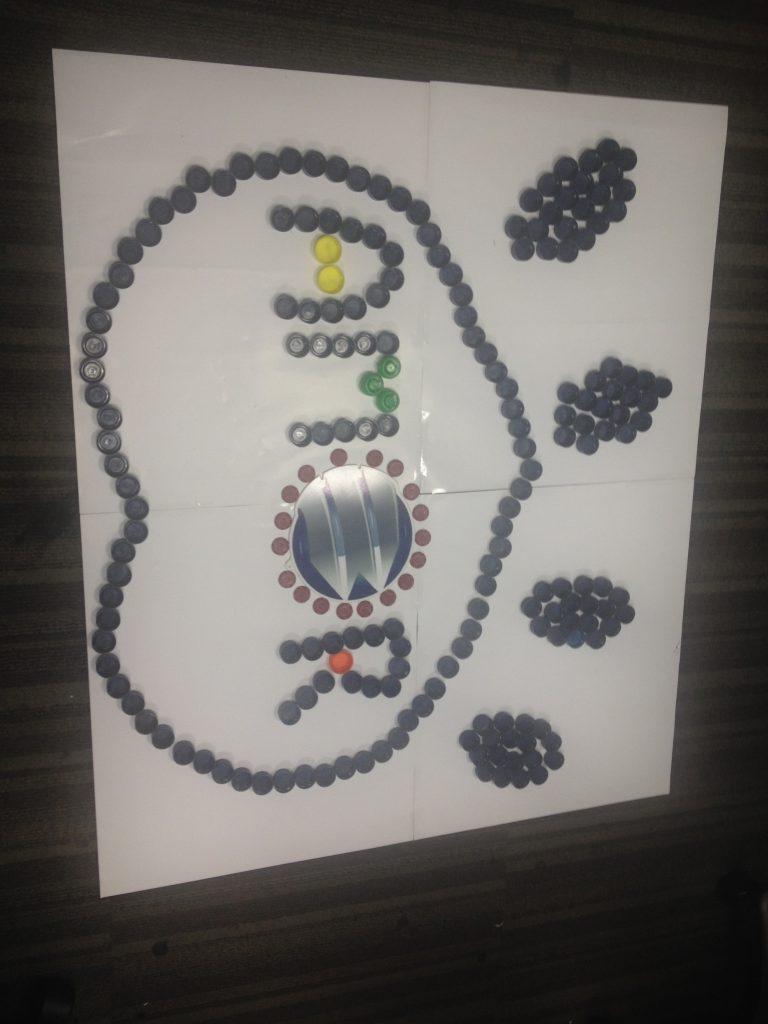 amor banplus 768x1024 - En Banplus sumamos energía y creatividad con tapitas de plástico