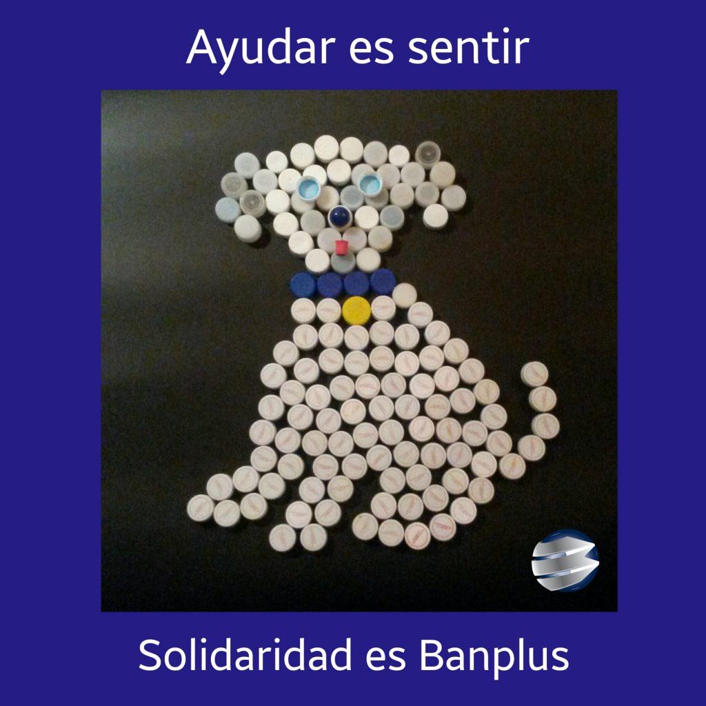 oficina barquisimeto este 1024x1024 - En Banplus sumamos energía y creatividad con tapitas de plástico