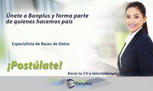 Especialista de Bases de Datos Blog 300x178 - Vacantes de empleo en Banplus, enero 2019