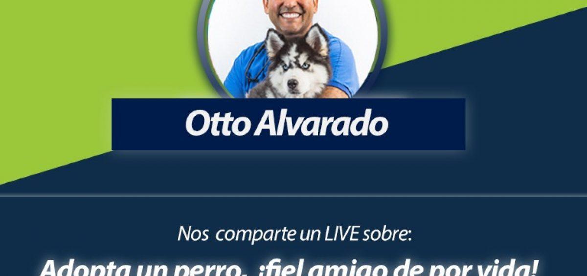 Foro en vivo con Otto veterinario 1200x565 - ¡Anota en agenda! Domingo 02/08, 11:00 a.m. Foro en Vivo sobre la adopción canina | Con Otto Alvarado, médico veterinario