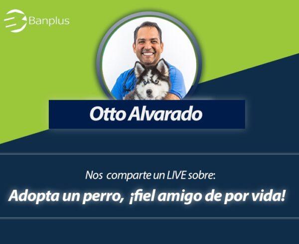 Foro en vivo con Otto veterinario 600x490 - ¡Anota en agenda! Domingo 02/08, 11:00 a.m. Foro en Vivo sobre la adopción canina | Con Otto Alvarado, médico veterinario