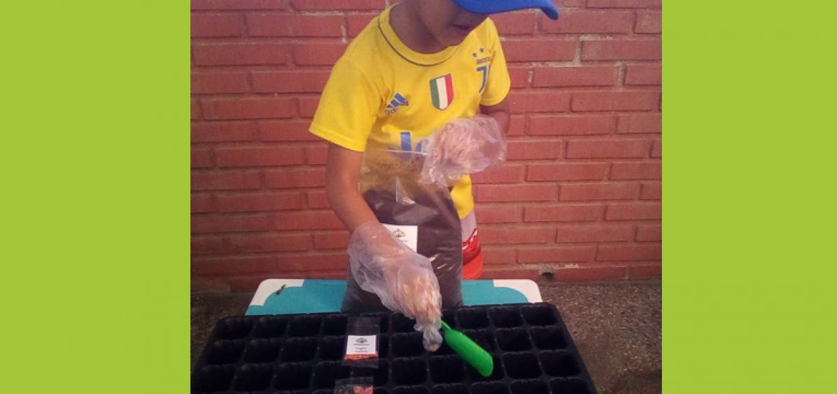 Huerto Jean Paul 1200x565 - Pequeños y jóvenes de Banplus aprenden sobre conservación y agricultura sin salir de casa