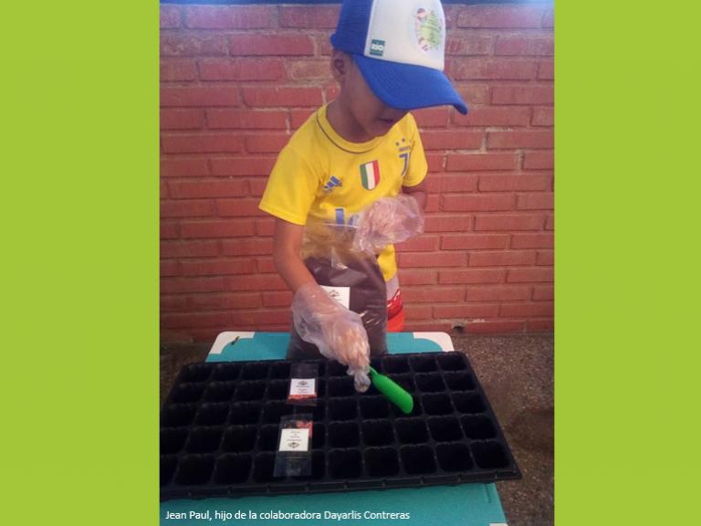 Huerto Jean Paul 768x576 - Pequeños y jóvenes de Banplus aprenden sobre conservación y agricultura sin salir de casa