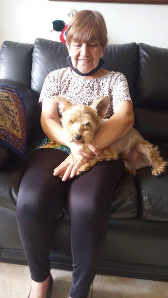 WhatsApp Image 2021 03 29 at 12.27.24 PM1 576x1024 - Adopción canina | A través de Ig Paticas Felices Banplus, Óreo llegó a un nuevo hogar