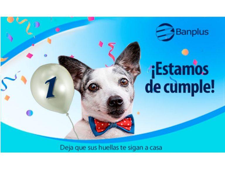 Aniversario Paticas Felices Blog 768x576 - Aniversario Paticas Felices Banplus: Un año siguiendo sus huellas