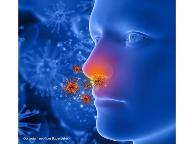 Meletin Bienestar Alergias Blog 768x576 - Maletín de Bienestar | Cuidemos nuestra Salud: Alergias